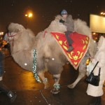 Camel in Moscow